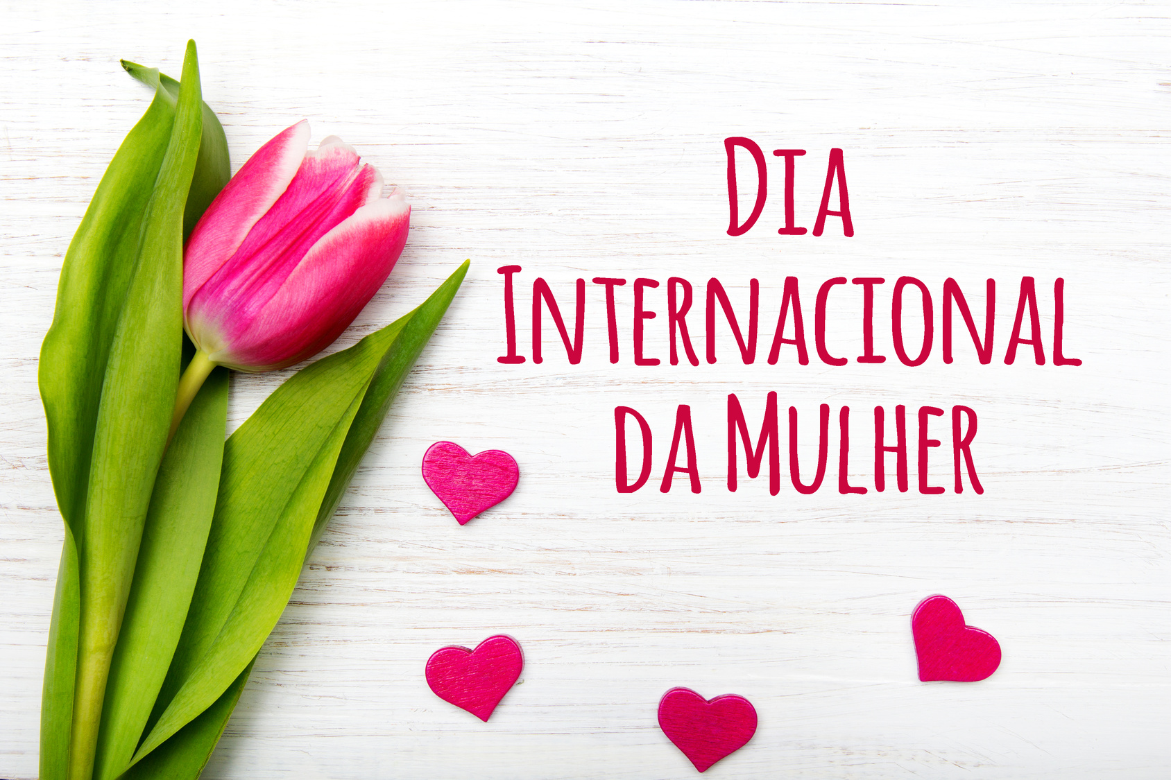 Acontece nesta quinta-feira (07) solenidade em homenagem ao Dia Internacional da Mulher