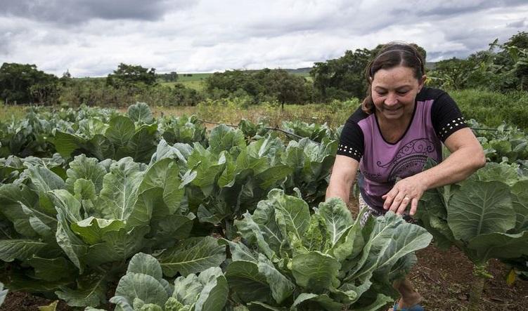 Congresso brasileiro enaltece o protagonismo das mulheres na agropecuária, participe!